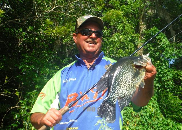 an introduction to the analysis of crappie fishing Introduction orlando fishing guide service is here to meet your bass fishing needs crappie and panfish orlando fishing guide now offers guided panfish trips on the kissimmee chain of.