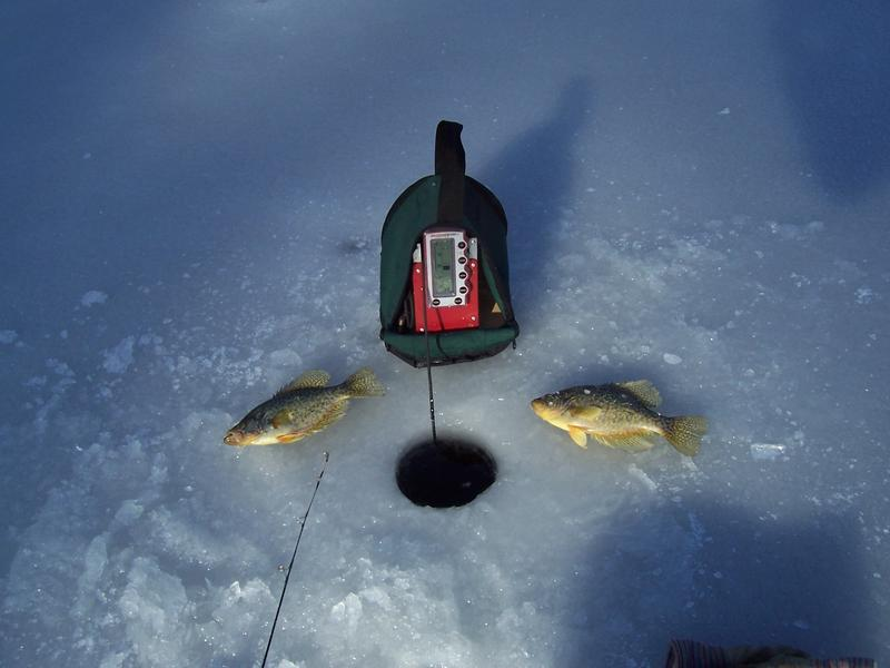 Showdown flasher page 3 for Ice fishing flasher