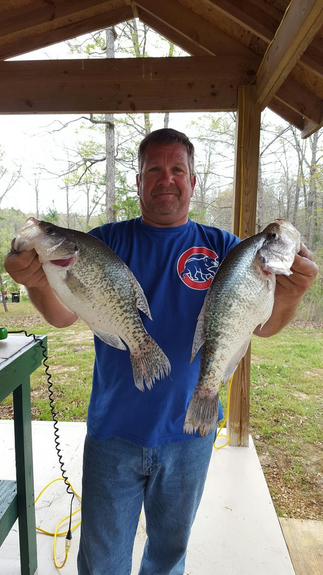 Mississippi crappie trip spring 2017 for Crappie fishing in mississippi