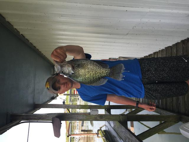 Kentucky lake last week for Crappie fishing in ky
