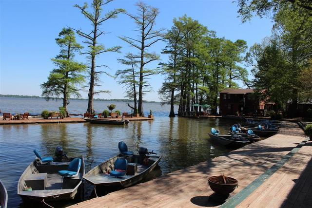 First time to reelfoot for Reelfoot lake crappie fishing