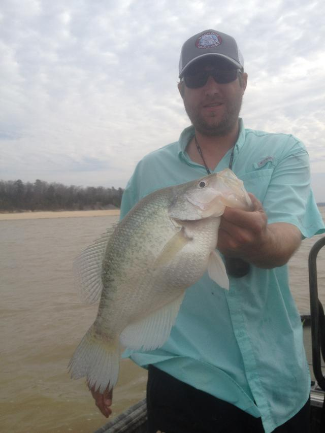 Crappie mount photos 3rd place 2014 for Crappie fishing in mississippi