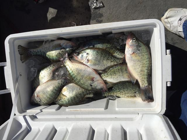 Great day on kentucky lake for Crappie fishing in ky