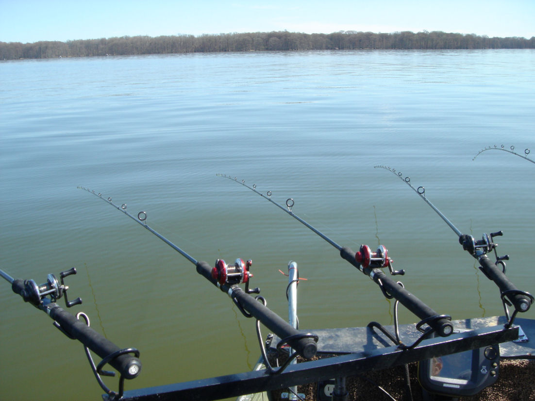 Homemade spider rig rod holder for Crappie fishing reels