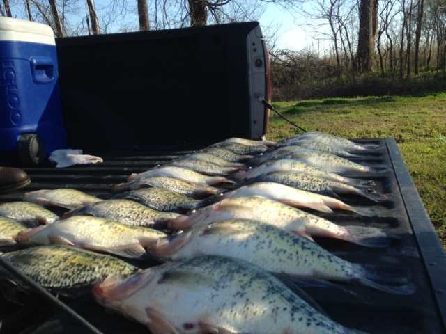 Spring fishing report for Crappie fishing in mississippi