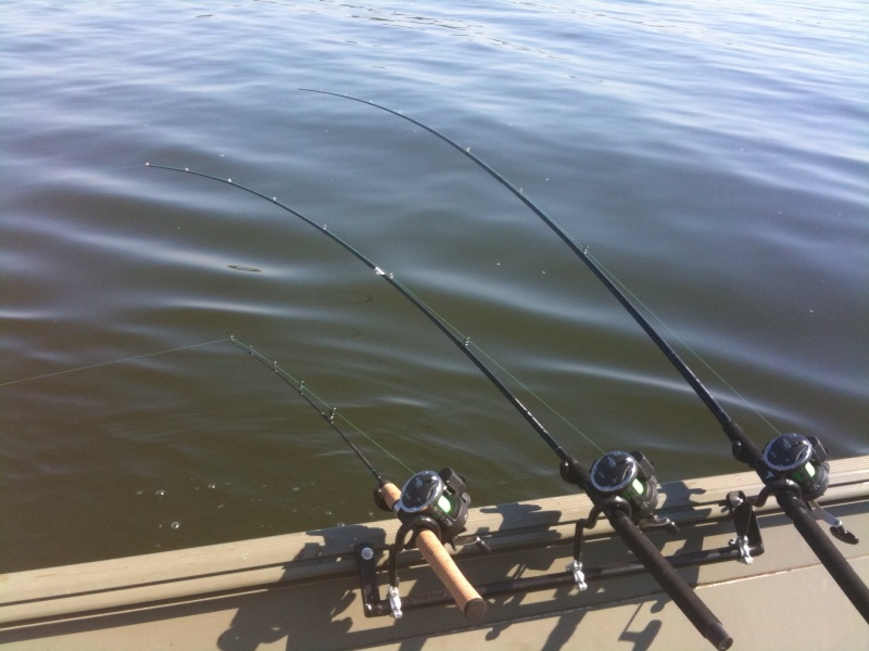 Name:  crank bait poles 2.jpg