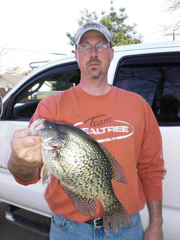Great big ole crappie on bull shoals lake for Crappie fishing in alabama