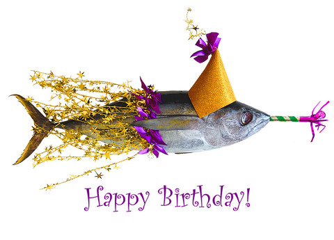 Name:  Happy-Birthday-Fish-Celebrating-Birthday-wb01606.jpg