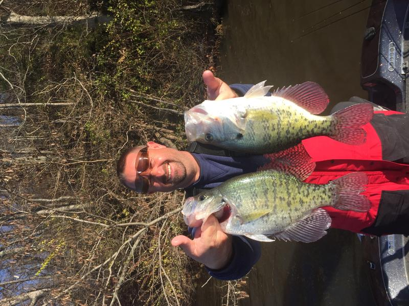 Some pics from this past few weeks for Crappie fishing ohio