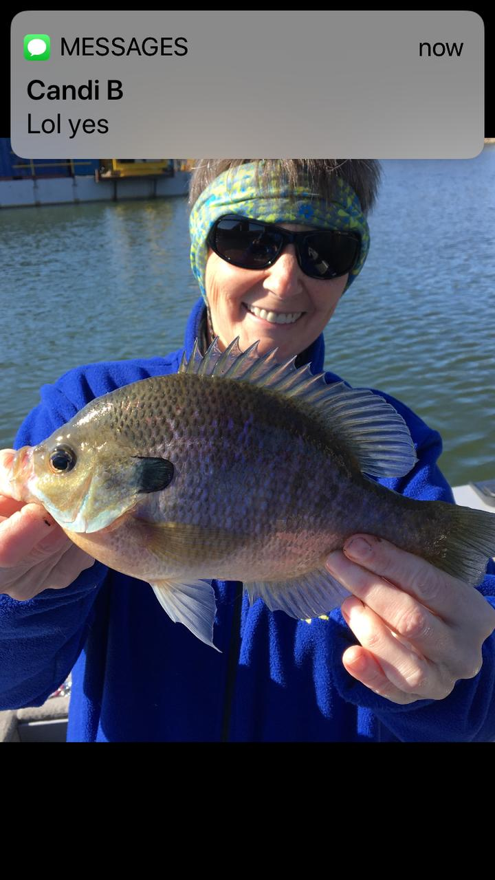 Riverpark bluegill fishing with cuonthelake for Blue gill fishing