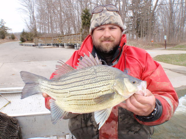 Chickamauga lake 3 15 15 for Crappie fishing in tennessee