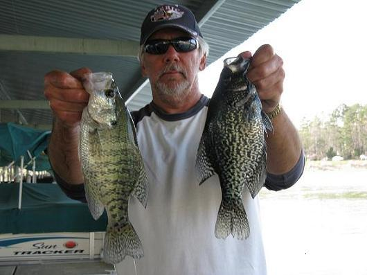 Chickamauga lake report 3 23 26 27 16 for Crappie fishing in tennessee