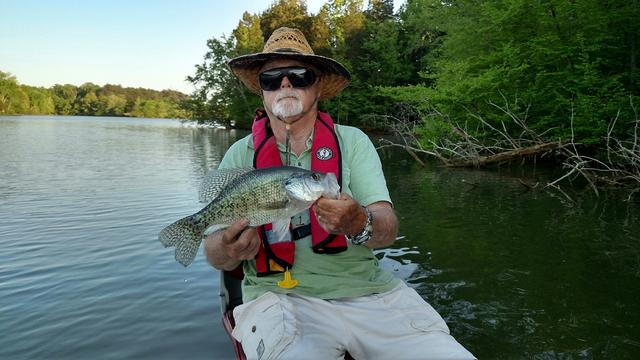 Old hickory lake report for Old hickory lake fishing