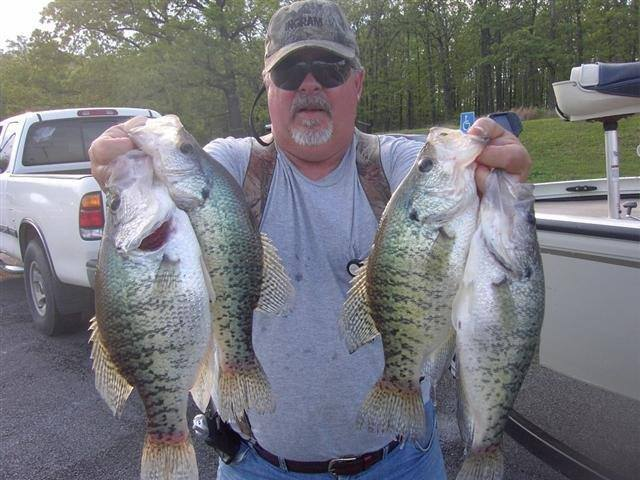 Kentucky crappie fishing guides listing for Crappie fishing in ky