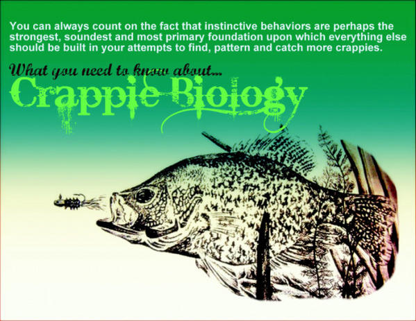 As promised here s crappie fishing 101 for newbies for Crappie fish facts