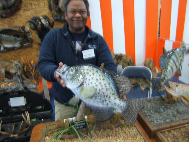 Pics Photos  Photo World Record Crappie