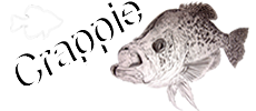 Crappie.com - Crappie Fishing Information and More